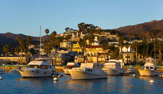 Hamilton Cove Harbor on Catalina Island